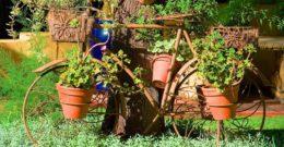 Más de 30 fotos de jardines sencillos con encanto