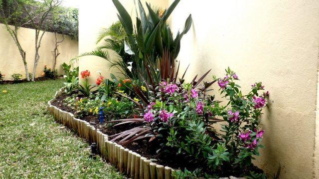 decora tu jardn con encanto y palmeras