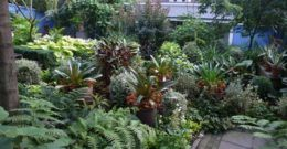Más de 20 ideas de jardines tropicales para una casa