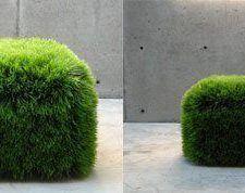 Grass Ottoman, como sentarse en el césped