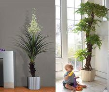Decora tu casa con flores del jardín