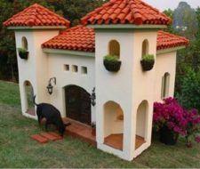 Casas de animales| fotos