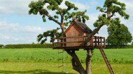Las 10 cabañas en árboles más bonitas de España y del mundo