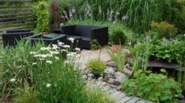 More than 25 photos of charming small gardens