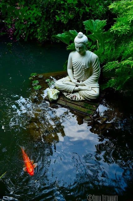 Jardines zen buda