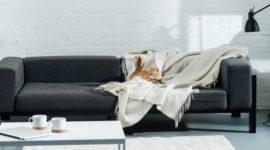 Cómo colocar una manta en un sofá