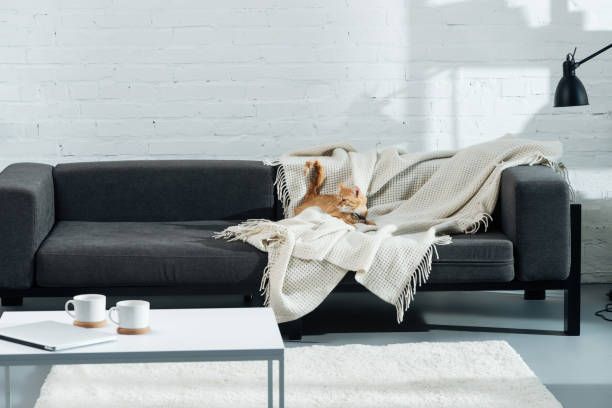 Como colocar una manta en el sofa