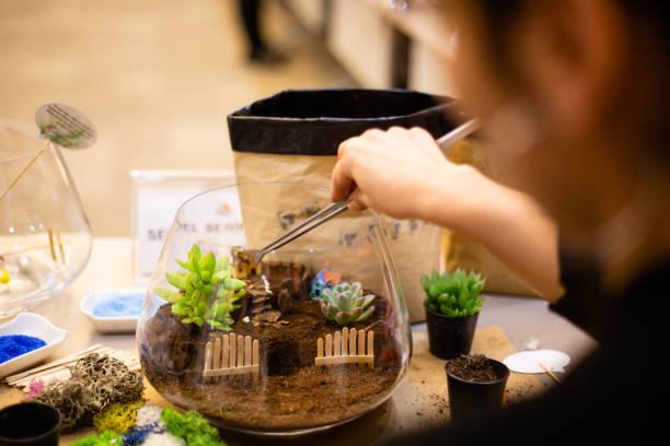 Cómo hacer un terrario en una pecera de cristal: 10 ideas