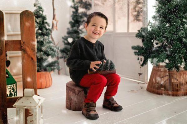 Niño con abetos navideños en la mano