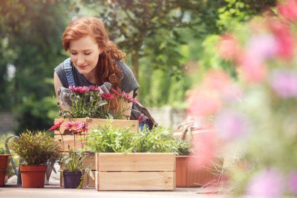 decorar-la-terraza-con-cosas-que-tienes-en-casa-mujer-plantando-flores-istock
