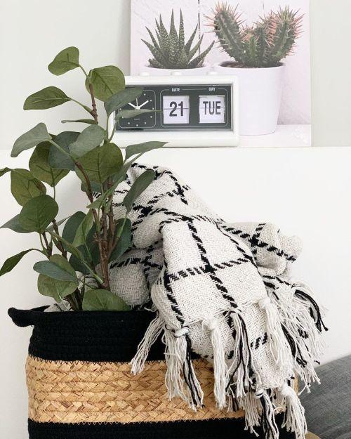 como-decorar-con-cestas-plantas-efecto-mariposa-shop-instagram