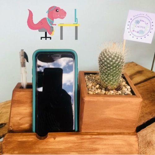 como-decorar-la-mesa-de-trabajo-cactus-instagram