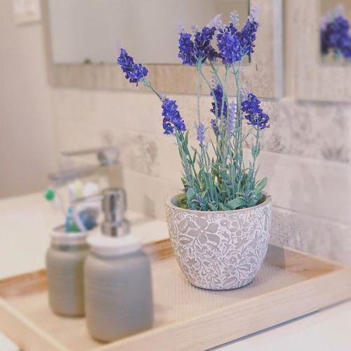 como-decorar-el-bano-sin-taladrar-instagram-natura-garden