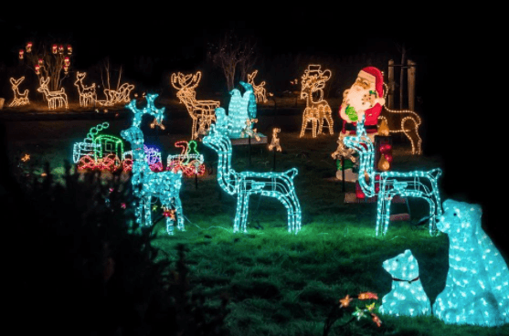 Luces de Navidad para jardín