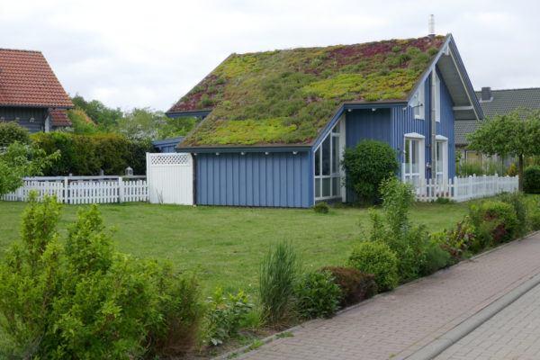 Ideas de fachadas de casas sencillas fotos e ideas bonitas casa techo verde