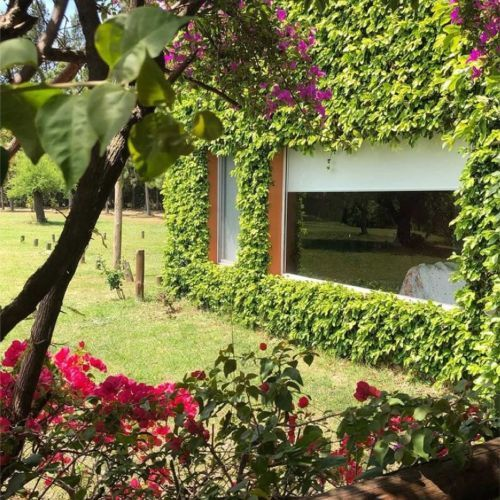 Jardín casa de campo