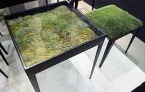 Jardin en una mesa