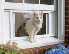 Cat Windoor, una puerta-ventana para tu gato