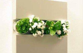 Decoración viva con flores y plantas