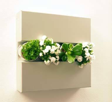 flowerbox.jpg