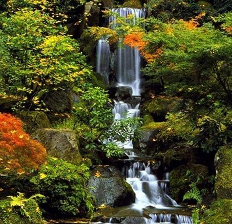 japanese-garden-portland-oregon