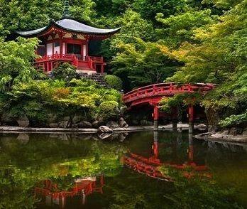 Jard n oriental for Jardin oriental