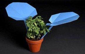 reLEAF. Recolector de agua de lluvia